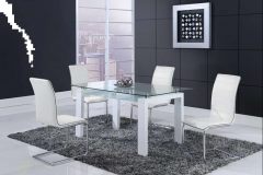 Elsa White 12mm Rectangular Glass Top in Frosted Finish Dining Set