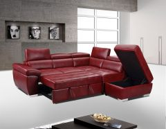 Sectional with Pull Out Bed, Adjustable Headrest, Storage Ottoman GL6237